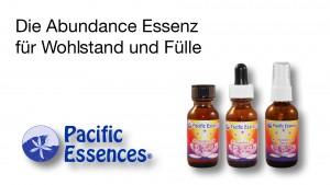 Read more about the article Video zur Abundance Essenz