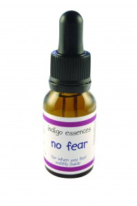 Indigo Essences: No Fear