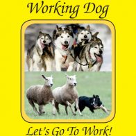 Working Dog (Wild Earth)