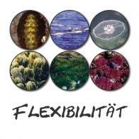 Flexibilität (Der Essenzenladen)