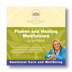 Australische Buschblüten: Flower and Healing Meditations
