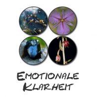 Emotionale Klarheit