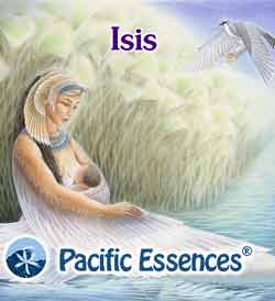 Pacific Essences: Isis