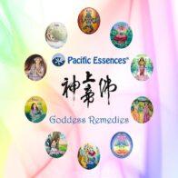 30 Jahre Göttinnen-Essenzen von Pacific Essences
