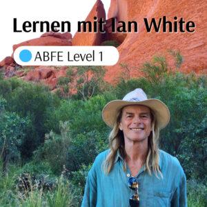 Australische Buschblüten Essenzen Level 1 Webinar