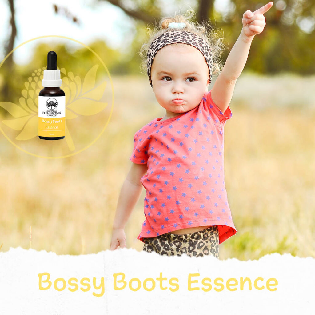 Bossy Boots (Australische Buschblüten Essenzen)