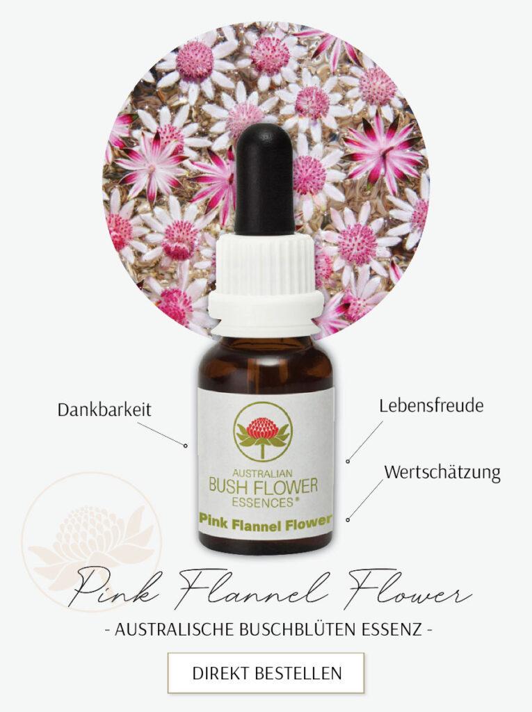 Pink Flannel Flower (Australische Buschblüten Essenzen)